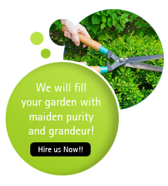 Contact Our Garden Maintenance Team Today